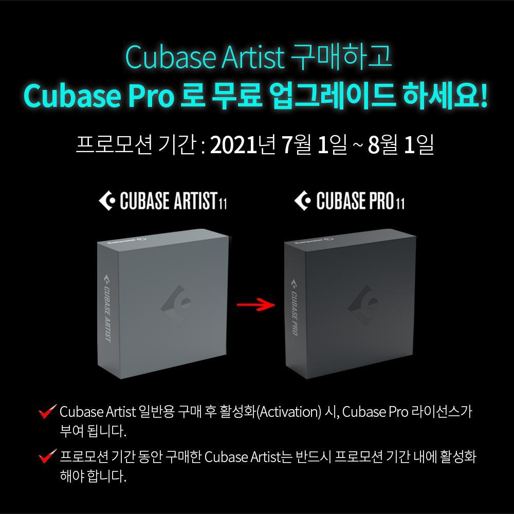 cubase_artist.png.jpg